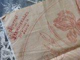 1899年 アンティーク 刺繍図案 アイリスの花 JOURNAL DES DEMOISELLES